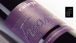 degustare vinuri privo